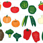Illustrations for an interactive part of the Grow Your Own Food exhibit